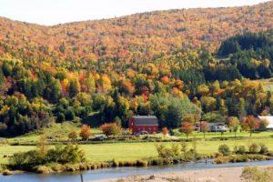 Cidade canadiana oferece casa gratuita e emprego para quem quiser mudar-se para lá