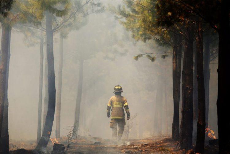 bombeiros odivelas revista ana maria