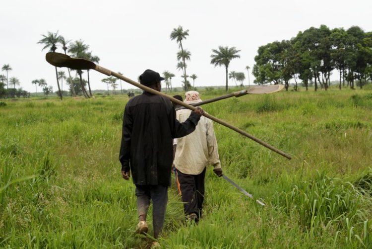 Resultado de imagem para Cabo Verde lança projecto sobre mudanças climáticas que vai beneficiar mais de seis mil pessoas