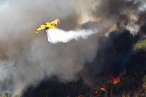 Última Hora | Número de mortos nos incêndios de domingo sobe para 41