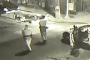 Polícia abate dois cães para salvar a vida de um homem [vídeo]