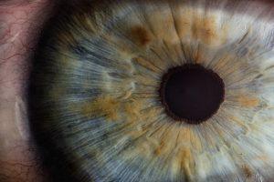 Cego volta a ver graças ao primeiro transplante de córnea artificial no mundo