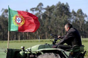 Agricultores manifestam-se em Lisboa contra política de preços baixos à produção