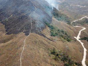 Amazónia regista 8.712 quilómetros quadrados de alertas de desflorestação