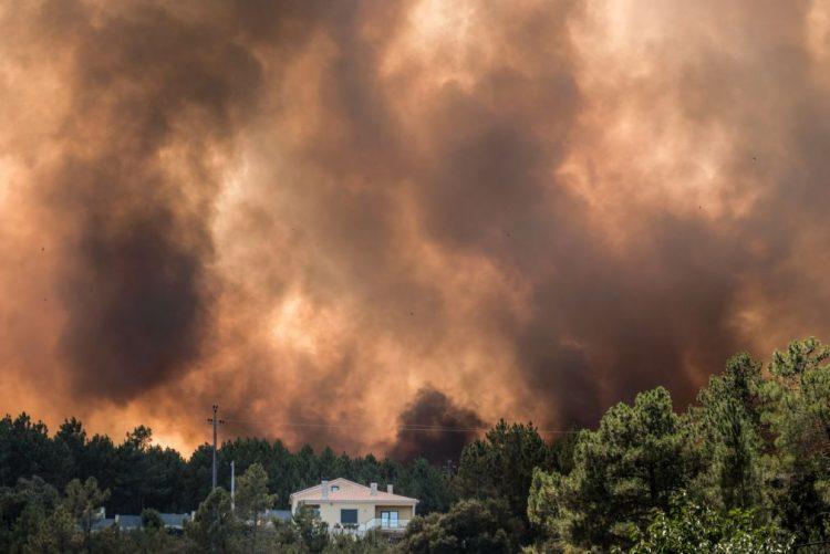 Câmara de Proença-a-Nova contabiliza 4,2 ME de prejuízos devido ao incêndio