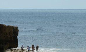 ALERTA | Cadáver encontrado junto a praia em Aveiro