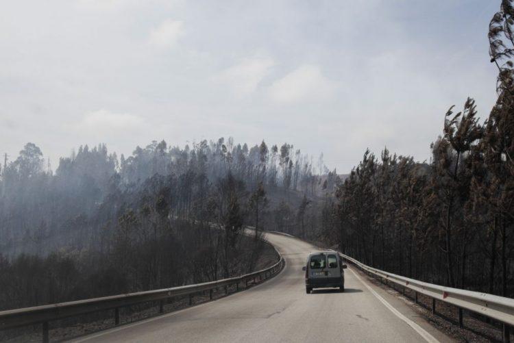 Relatório sobre incêndio de Pedrógão Grande questiona mudanças feitas na Proteção Civil