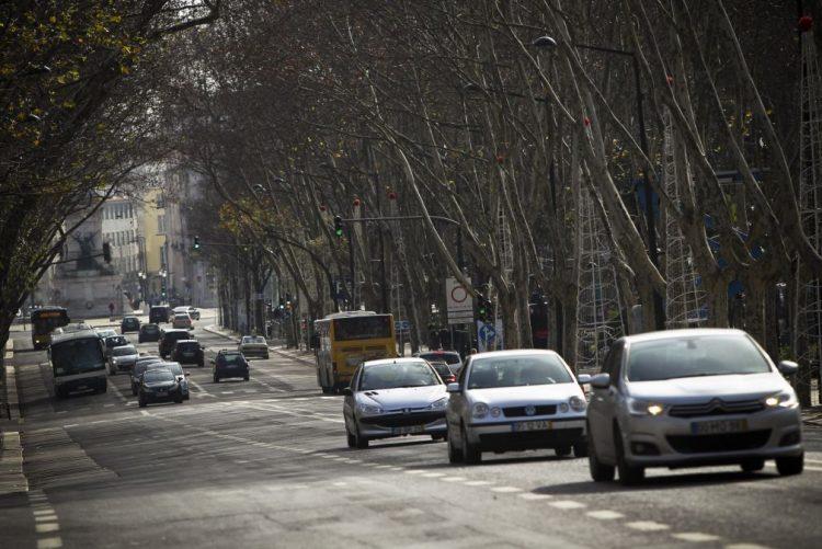 ALERTA   Queda de árvore danifica carros em Lisboa