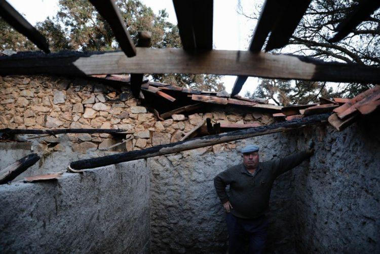 A vida não parou. Agricultores retomam atividade mesmo que tardem as ajudas após os incêndios