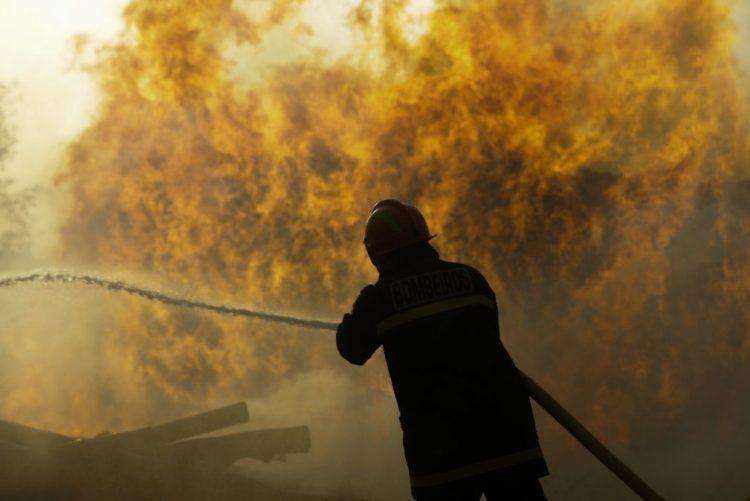 Mais de 442 mil hectares ardidos no pior ano de sempre em Portugal