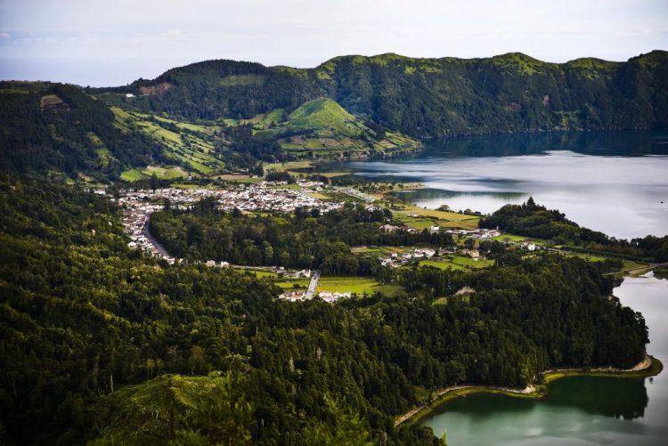 Mais de três milhões de árvores foram plantadas nos Açores entre 2012 e 2015