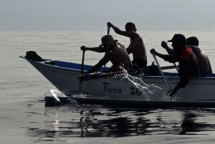 PR da Guiné-Bissau pede contrapartidas pelas licenças de pesca atribuídas a navios estrangeiros