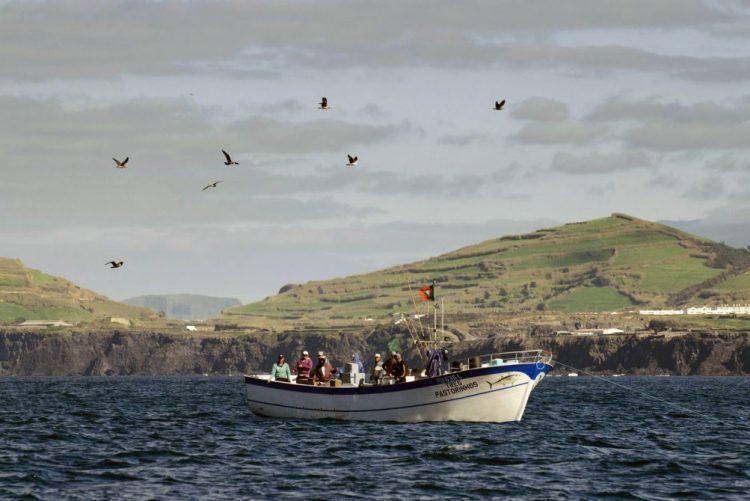 Ministros das Pescas da UE reúnem-se 2.ª e 3.ª feira para decidir limites das capturas