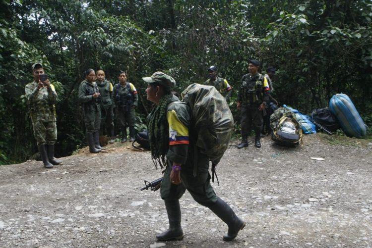 Guerrilheiros das FARC começaram a chegar às zonas de normalização