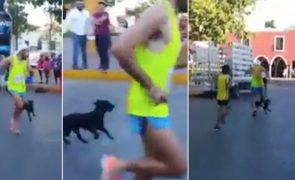 Atleta pontapeia um cão violentamente durante maratona [vídeo]