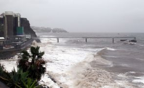 Capitania do Funchal recomenda que embarcações fiquem nos portos de abrigo