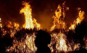 Relatório sobre fogos de outubro entregue hoje no parlamento