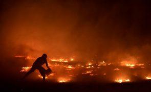 Populações «entregues a si próprias» e em «dramático abandono» nos fogos de outubro