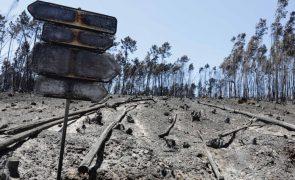 PSD quer ouvir autores do relatório sobre os incêndios e pede fim das
