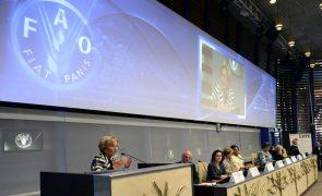 FAO tem novo representante em Moçambique