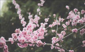 Meteorologia: Previsão do tempo para domingo, 18 de abril
