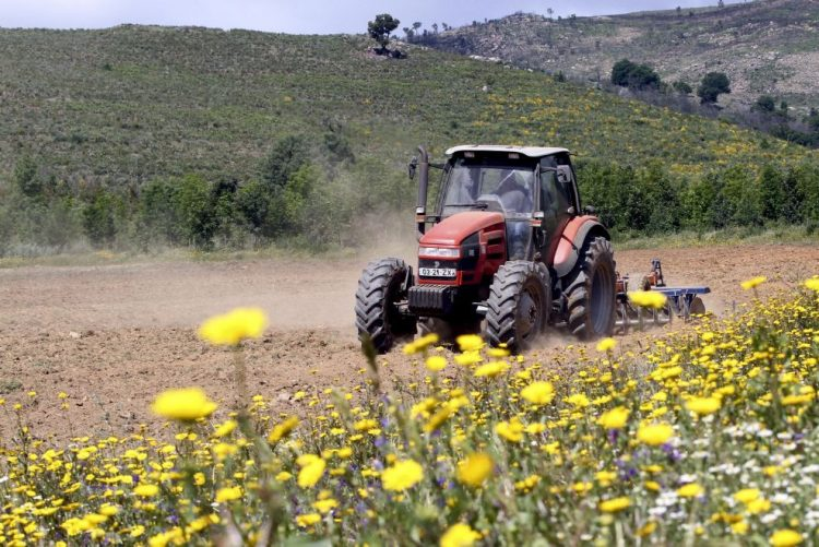 Montemor-o-Velho: Homem morre após acidente com máquina agrícola