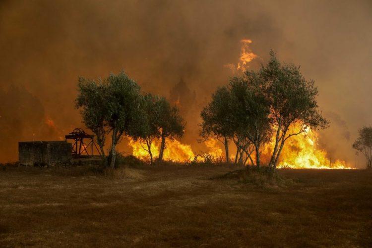 CEMGFA defende que papel dos militares é apoiar quem combate os incêndios