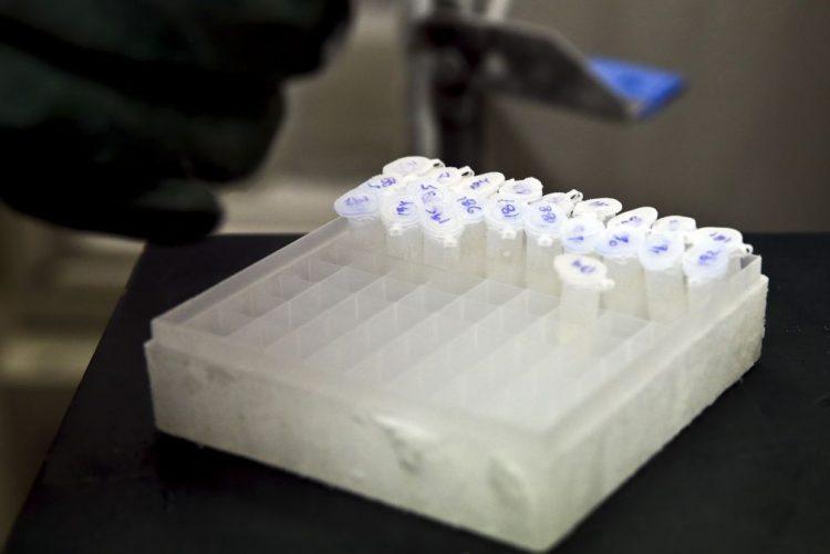 Detetada 'legionella' no serviço de Imunohemoterapia do Hospital das Caldas da Rainha
