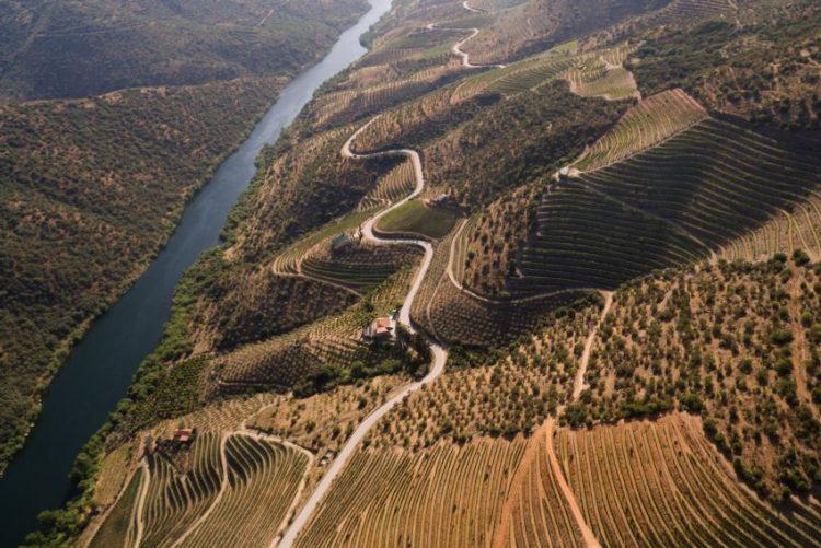 Viagem pelos 897 quilómetros de Douro dá origem a novas músicas e a documentário