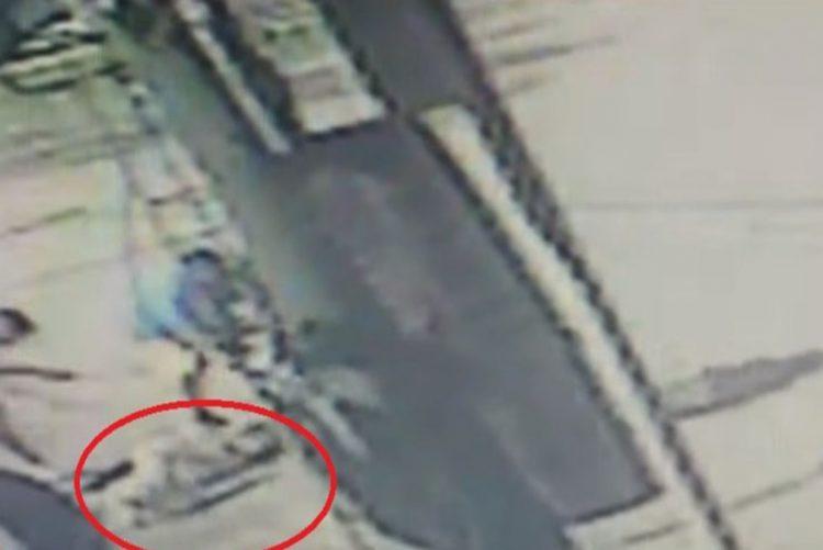 Câmaras de segurança registaram o momento em que um grupo assassinou uma cadela. A dona nada conseguiu fazer para evitar a barbaridade.