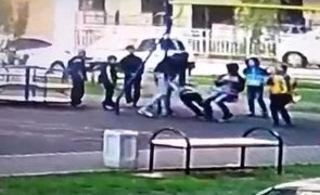 Agrediu crianças que perturbaram o filho num parque infantil [vídeo]