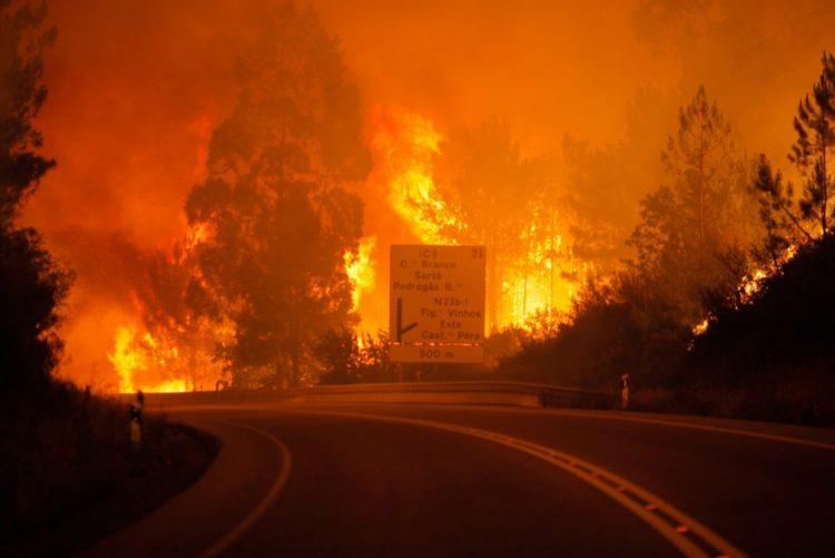 Vítimas dos fogos de junho e outubro com isenção de taxas moderadoras no SNS
