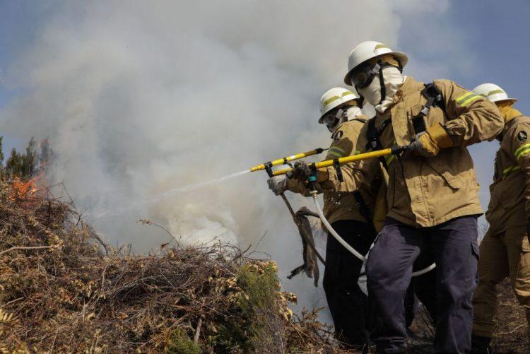 Incêndios: GIPS com maior responsabilidade na intervenção e na cobertura territorial