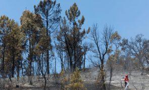 Alerta para aumento do perigo de incêndio até quinta-feira