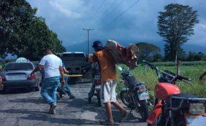 Grupo de venezuelanos faminto mata vaca à pedrada [vídeo]