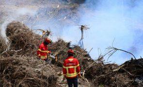 Criada aplicação para autorizar queimas e queimadas seguras