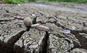 Angola cada vez mais afetada pelas alterações climáticas globais vai ter mais eventos de seca