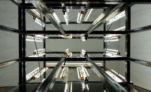 Pedro Cabrita Reis expõe esculturas inéditas no Museu de Santo Tirso