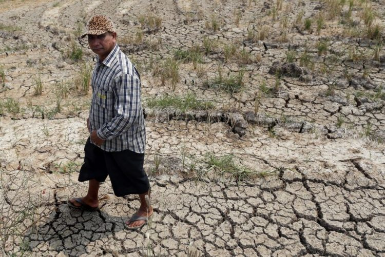 Alterações climáticas e floresta integram novo ano letivo na região Viseu Dão Lafões