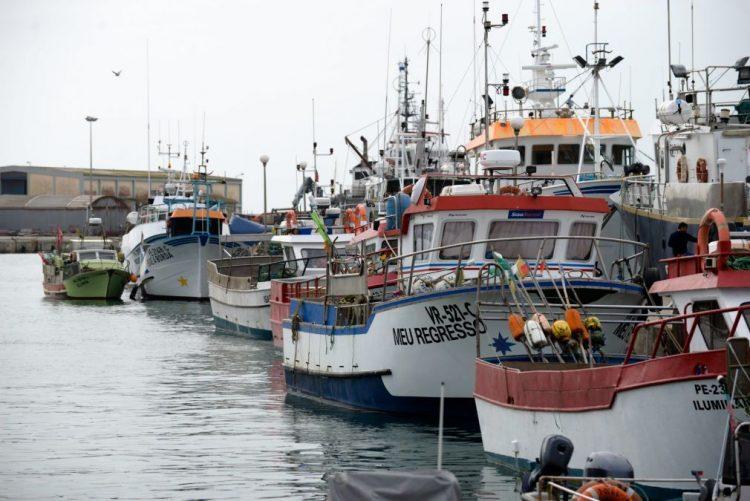 FAO alerta para o aumento da sobre-exploração dos recursos pesqueiros no mundo