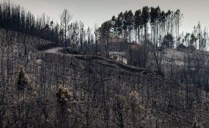 Número de arguidos dos incêndios de Pedrogão Grande aumenta para 18