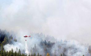 Suécia pede ajuda à União Europeia para combater fogos florestais