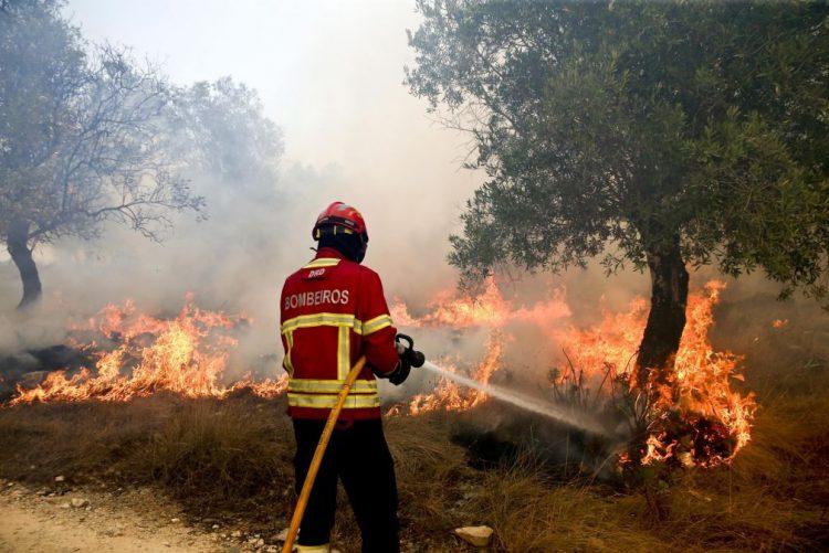 ÚLTIMA HORA: Fogo em Matosinhos pode afetar casas e fábrica