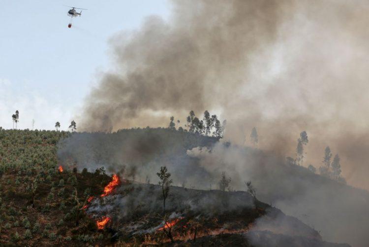Seis feridos com queimaduras, dois graves, em incêndio em Estremoz