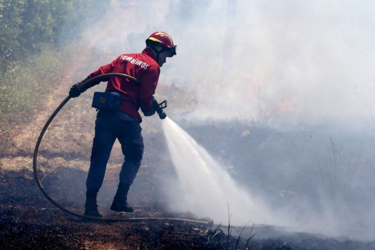 ALERTA   Mais de meia centena de concelhos em risco máximo de incêndio