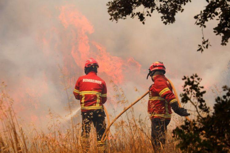 Energia elétrica reposta em 12 das 17 localidades afetadas pelo fogo em  Monchique