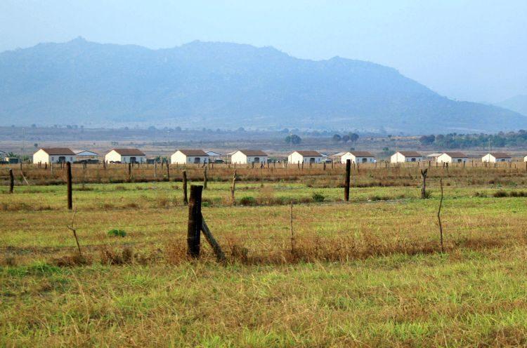 Angola tem défice agrícola de 30% a 45% e precisa de 5 milhões de toneladas de cereais por ano