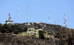 Propostas de produtores florestais do Algarve remetem para 01 de fevereiro de 2019
