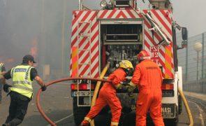 Quatro corporações combatem incêndio florestal na Camacha, na Madeira