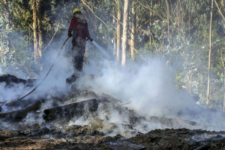 ALERTA INCÊNDIOS: Fogo na Madeira entrou em fase de rescaldo
